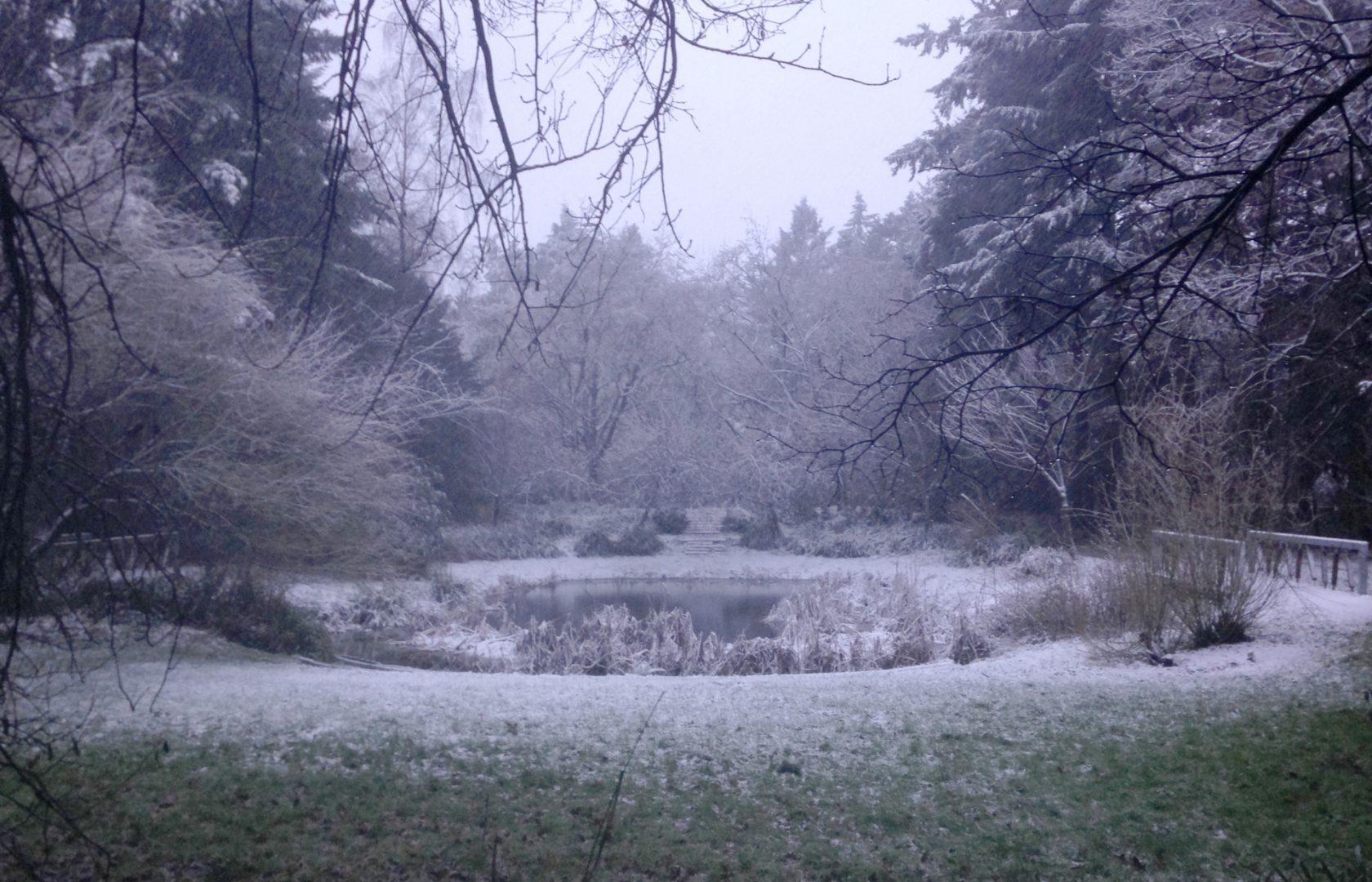 Winter: Gimbornhof (Juvenaatbos) in snow, Zevenaar The Netherlands
